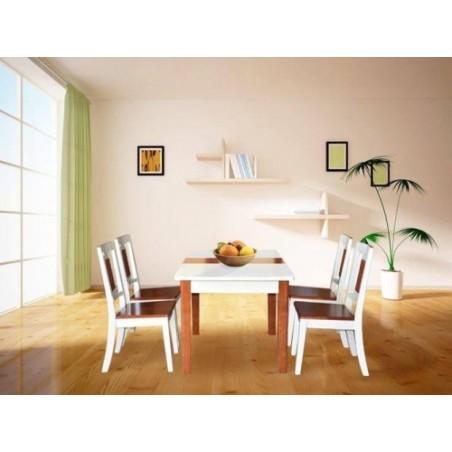 Bộ bàn ăn khung gỗ BA117, GA117