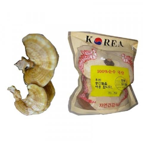 Nấm linh chi vàng 5 lá/kg-Thế giới đồ gia dụng HMD